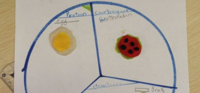 GRADE III HEALTHY EATING (10)
