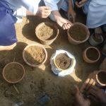 Grade III, IV and V plantation activity (7)