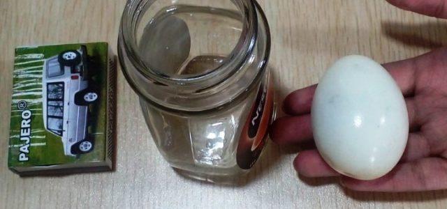 EgginBottle (6)