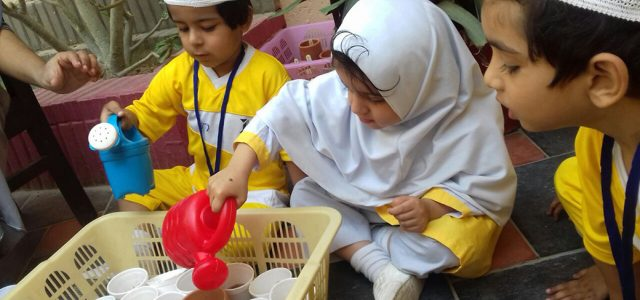 Sprouting Seed with Juniors (10)