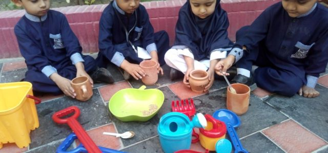 Sprouting Seed with Juniors (15)