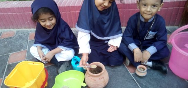 Sprouting Seed with Juniors (17)