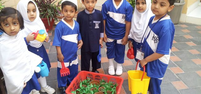 Sprouting Seed with Juniors (23)