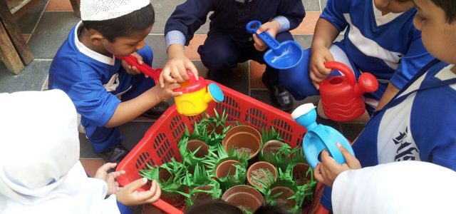 Sprouting Seed with Juniors (24)