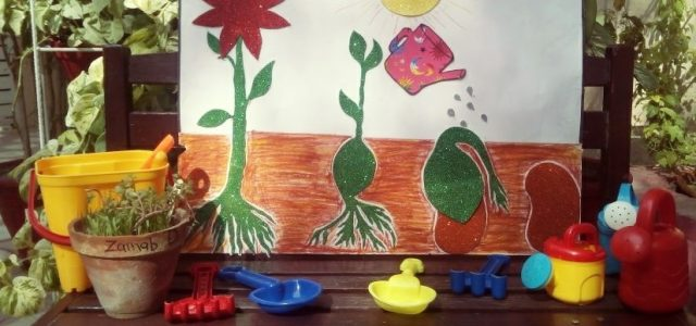 Sprouting Seed with Juniors (25)