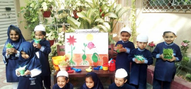 Sprouting Seed with Juniors (26)