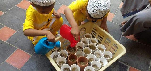 Sprouting Seed with Juniors (8)