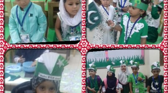 JM Goes Green on Independence Day (14)