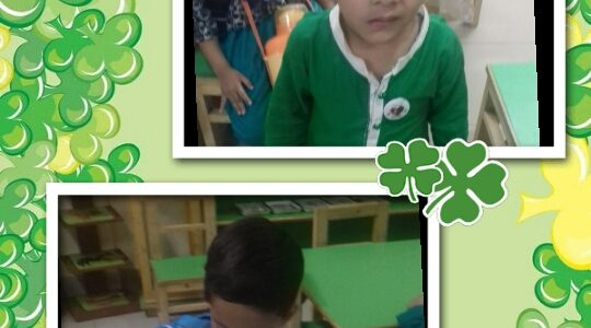JM Goes Green on Independence Day (2)