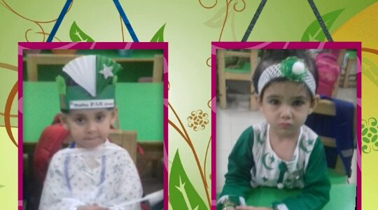 JM Goes Green on Independence Day (7)