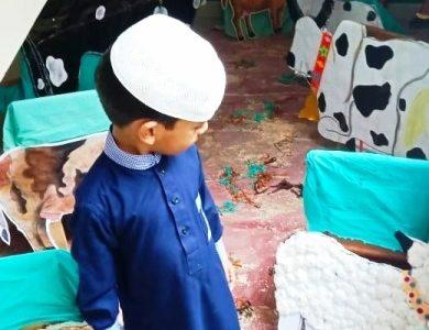 Eid-ul-Adha Activity in Junior Montessori10