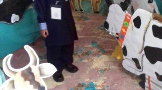 Eid-ul-Adha Activity in Junior Montessori14