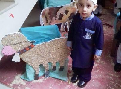 Eid-ul-Adha Activity in Junior Montessori15