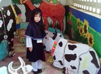 Eid-ul-Adha Activity in Junior Montessori17