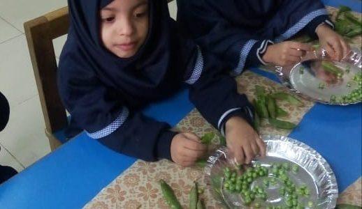 Peas Shelling (2)